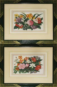 Chinese Botanical Paintings