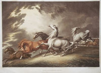 Howett: Horses frightenid by a Storm