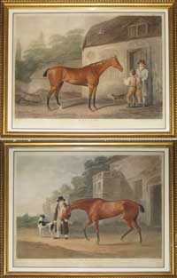 Whessell Racehorses